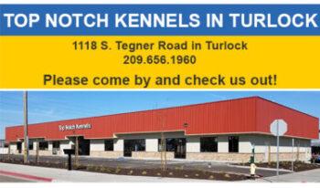 Turlock Location
